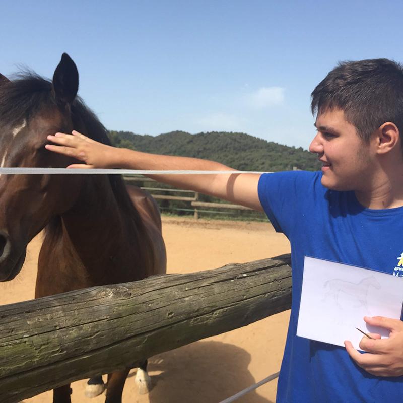 El Proyecto EVI y el contacto con animales